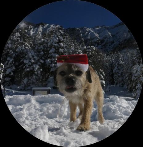 Christmas - 1a
